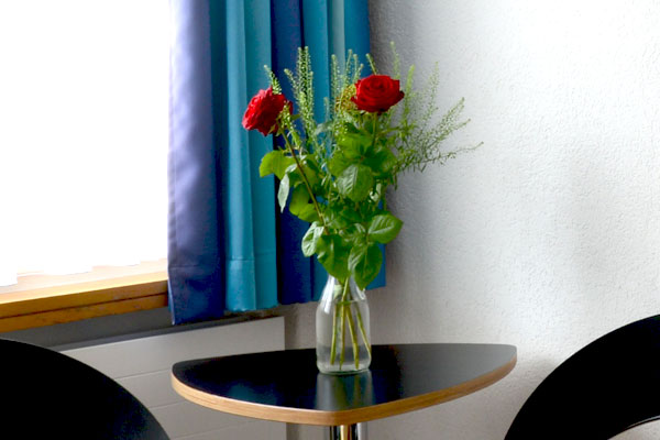 Flowers at the rooms of Hotel Vezia